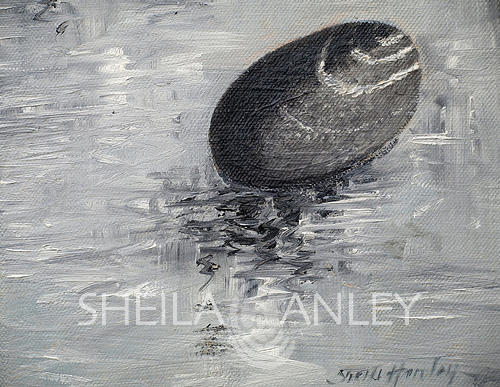 Study of Stones 01 - 20 x 30cm Oil on Canvas by Sheila Hanley
